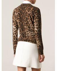 Dolce & Gabbana - Multicolor Leopard Print Cardigan - Lyst