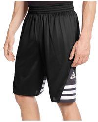 Adidas | Black Superstar 2.0 Basketball Shorts for Men | Lyst
