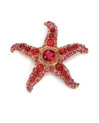 Kenneth Jay Lane | Red Maroon Starfish Pin | Lyst