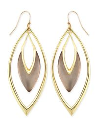 Alexis Bittar - Gray Orbiting Marquise Drop Earrings - Lyst