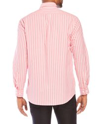 Bills Khakis - Pink Bengal Classic Fit Stripe Shirt for Men - Lyst