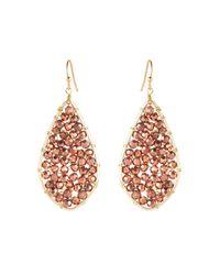 pannee by panacea - Metallic Gold-tone Crystal Teardrop Earrings - Lyst