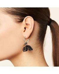 COACH - Multicolor Studded Tea Rose Earrings - Lyst