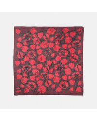 COACH | Red Scribble Camo Rose Scarf | Lyst