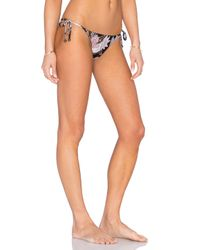 Zimmermann - Multicolor Henna Crochet Bra Bikini Set - Lyst