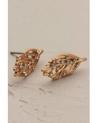 Anthropologie - Metallic Gilded Leaf Earrings - Lyst