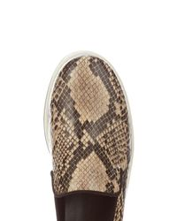 Stella McCartney - Black Binx Faux-Python Flatform Loafers - Lyst