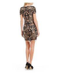 Dress the Population - Black Megan Sequin Lace Sheath Dress - Lyst
