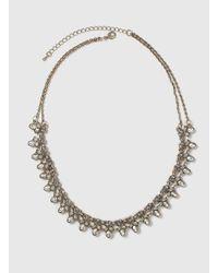 Dorothy Perkins - Brown Rhinestone Collar Necklace - Lyst