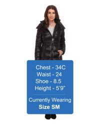 DKNY - Black 3/4 Horizontal W/ Inset Waist 97401-y5 - Lyst