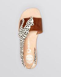 Jeffrey Campbell - Multicolor Flat Sandals Jungle - Lyst