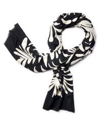 Tory Burch | Black Symphony Embroidered Scarf | Lyst