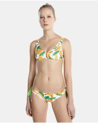 7878a6f2249 Green Coast. Women's Green Bikini Pack With Padded Triangle Top And Two High -waist Bottoms