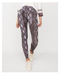 Express - Multicolor High Waisted Stretch Snake - Lyst