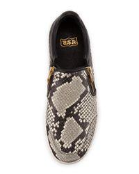 Ash - Gray Jordy Snake-Print Sneaker - Lyst