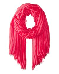 Vera Bradley | Pink Silk Chiffon Scarf | Lyst