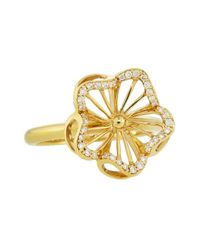 Roberto Coin | Metallic 18k Gold Diamond Flower Ring Size 65 | Lyst