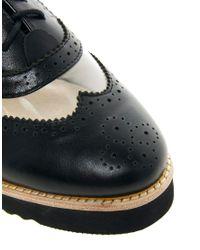 Messeca - Black Max Chunky Brogue Shoe - Lyst