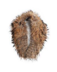 Yves Salomon | Brown Marmot Fur Collar | Lyst