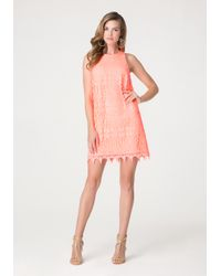 Bebe - Orange Lace Shift Dress - Lyst