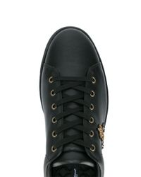 Dolce & Gabbana - Black Bee Embroidered Low-top Trainers for Men - Lyst