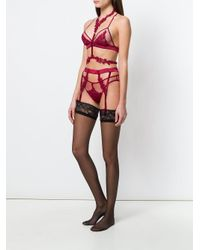 Fleur Of England - Red Lace Harness - Lyst