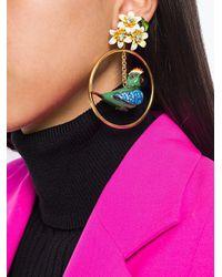 Dolce & Gabbana - Metallic Parrot Drop Earrings - Lyst