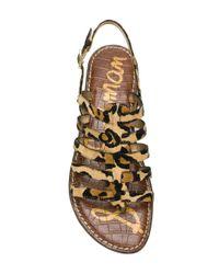 Sam Edelman - Brown Strappy Leopard Print Sandals - Lyst