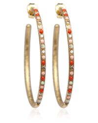Carolina Bucci - Metallic Yellow Gold Gitane Studded Hoop Earrings - Lyst