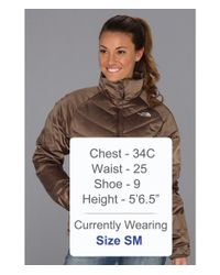 The North Face - Brown Aconcagua Jacket - Lyst