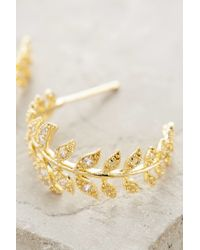 Anthropologie | Metallic Feathered Frond Hoops | Lyst