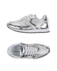 CafeNoir - Metallic Low-tops & Trainers - Lyst