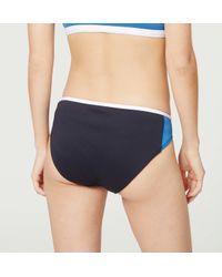 LOFT - Blue Beach Colorblock Bikini Bottom - Lyst