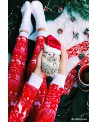 Forever 21 - Red Reindeer Holiday Onesie - Lyst