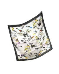 Roberto Cavalli - Multicolor Birds Garden Print Silk Square Scarf - Lyst