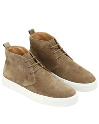 Tod's - Natural Chukka Boots Men for Men - Lyst