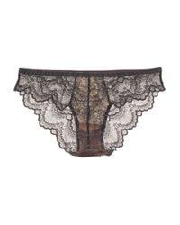 Blush Lingerie - Gray Mesh Lace Bikini Brief - Lyst