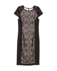 H&M | Black Lace Dress | Lyst