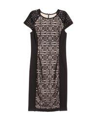 H&M - Black Lace Dress - Lyst