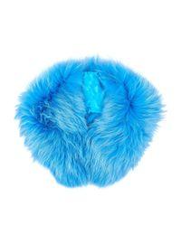 Mr & Mrs Italy - Blue Raccoon Fur Collar - Lyst