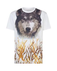 Etro | White Wolf Face Graphic T-shirt for Men | Lyst