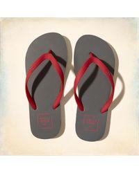 67db349e2a2903 Lyst - Hollister Logo Flip Flops for Men