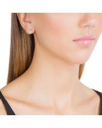Daisy London - Metallic Ke1009 Ladies Earrings - Lyst