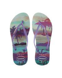 Havaianas - Purple 4132614 Fluoro Jelly Tropical Flip Flop - Lyst
