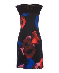 Ellen Tracy   Black Cap Sleeve Floral Printed Shift Dress   Lyst