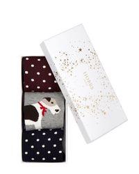 Hobbs | Multicolor Poppy Sock Set | Lyst