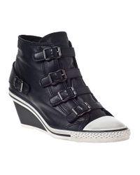 Ash   Genial Wedge Sneaker Black/black Leather   Lyst
