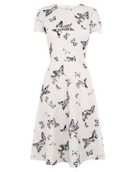 Oasis - Gray Everly Butterfly Lace Dress - Lyst