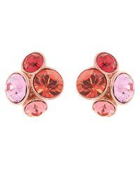 Ted Baker | Pink Lynda Swarovski Crystal Cluster Stud Earrings | Lyst