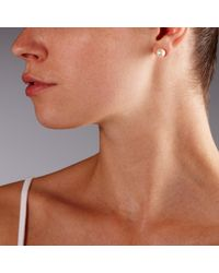 John Lewis   White Faux Pearl Stud Earrings   Lyst